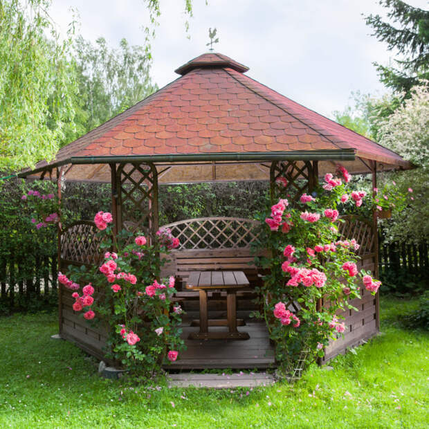 Живая беседка —  тихий островок на вашем садовом участке