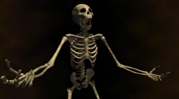 Купи кости: зачем в 19 веке торговали человеческими останками