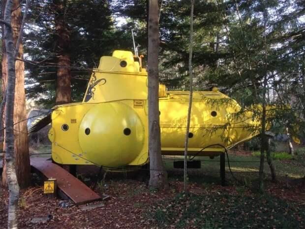 Безумный ученый из Новой Зеландии построил желтую подводную лодку в лесу