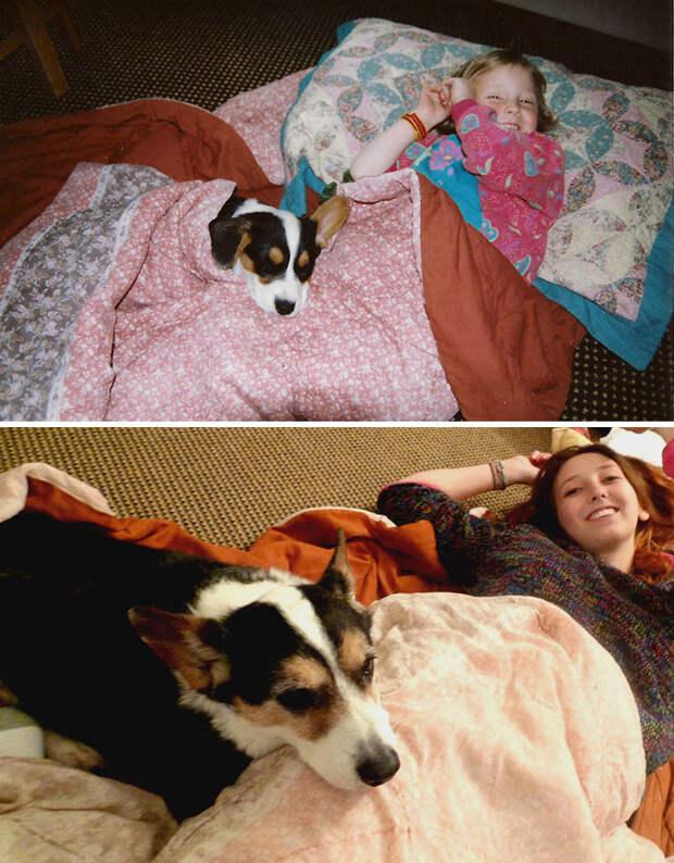 Лучший друг за 15 лет  до и после, друзья, собаки, фото