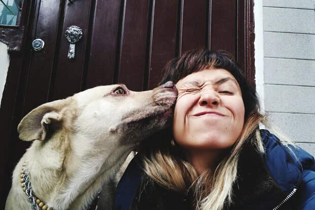 Язык жестов: как ваша собака говорит, что любит вас