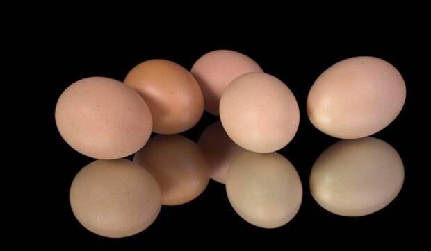 """""""Яйцам комфортно"""": в Минсельхозе оценили риск дефицита яиц"""