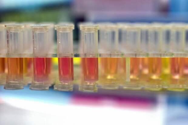 Материалы для тестирования на на COVID-19 в уханьской лаборатории «Огненный глаз» в Китае