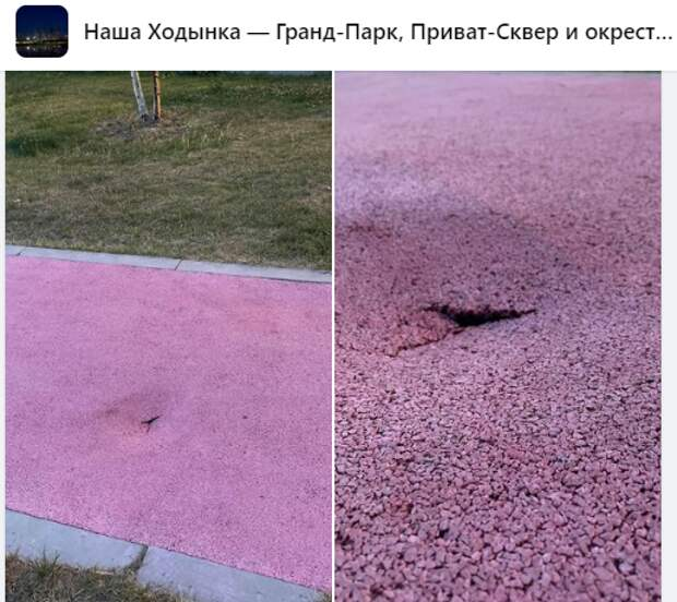Площадку для собак на Ходынке оперативно отремонтировали