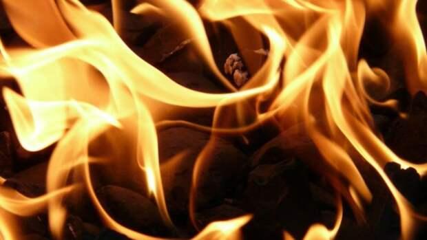 Жителя Алтайского края подозревают в убийстве пенсионерки и поджоге дома