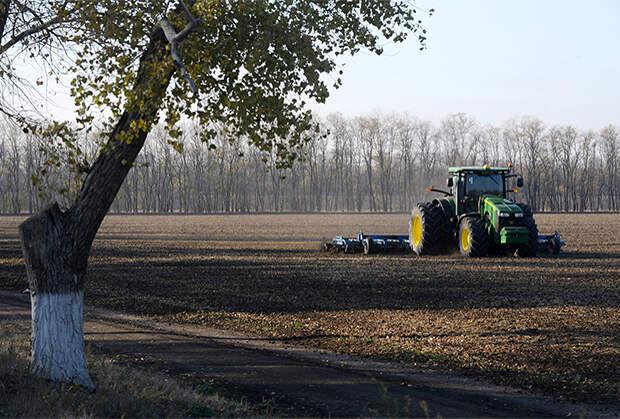 Трактор боронит вспаханное поле возле станицы Кущевской (Краснодарский край)