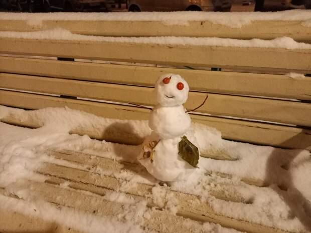 Первый снеговик этой зимы. Фото автора.