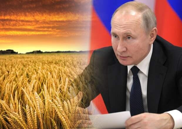 В Германии восхитились стратегией Москвы перед «зерновым штормом»