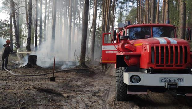 Пожароопасный сезон в лесах Подмосковья откроют в марте