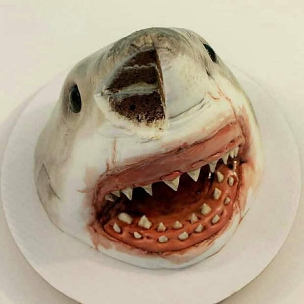 тортик акула