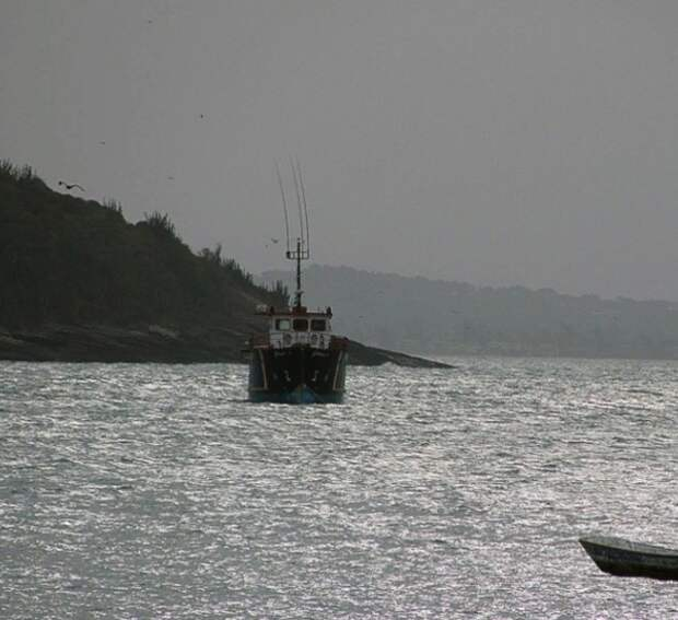 Из-за ЧП в Баренцевом море возбуждено дело, поиски моряков продолжаются