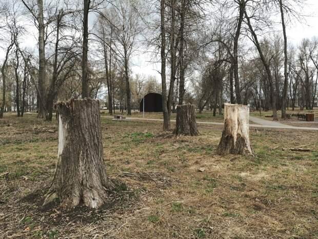 Парк в Ворсме пришел в запустение через три года после благоустройства