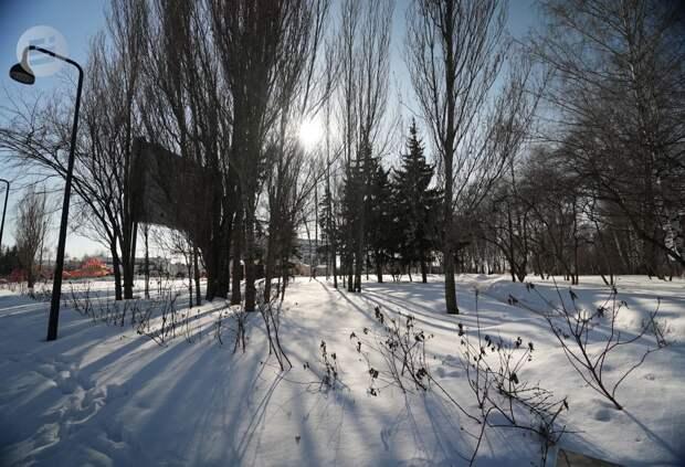 К выходным воздух в Удмуртии прогреется до +2 градусов