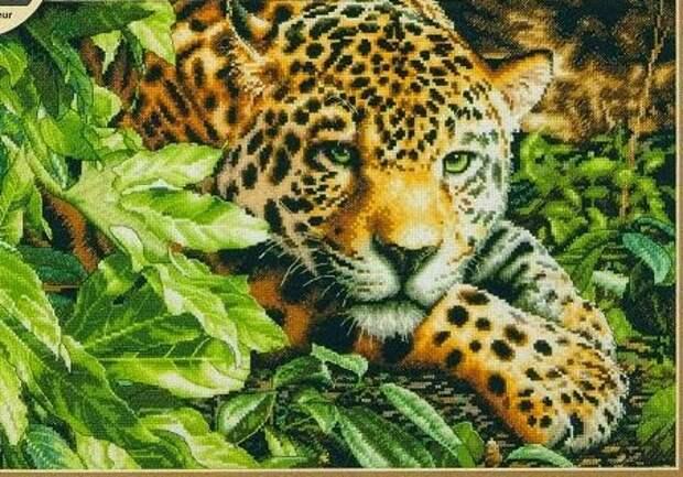 ВЫШИВАЙКА. Леопард на отдыхе