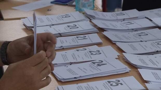 Рекордное число наблюдателей готовит Общественная палата на выборах в Новосибирске