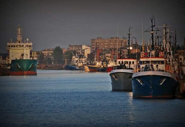 В Балтийском море ловить нечего: ЕС отбирает у Латвии «последние шпроты»