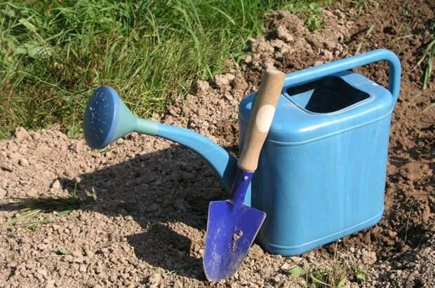 Чего НЕ нужно делать в саду весной - 5 главных ошибок садоводов