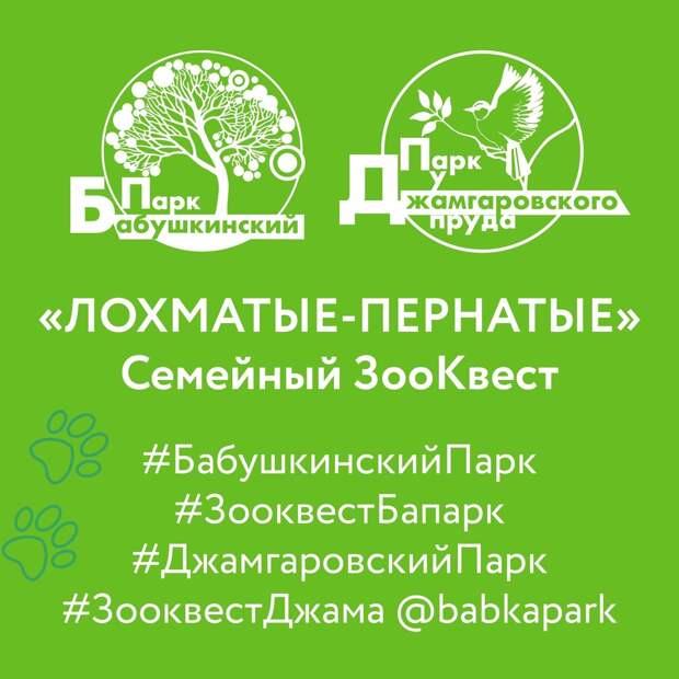 В парках Лосинки запустили зооквест