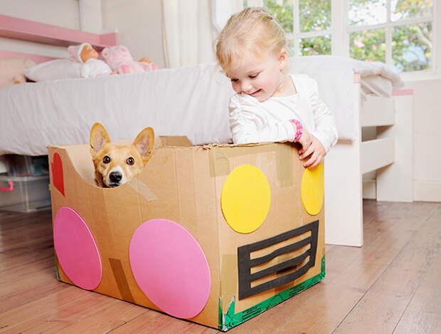 Чем заняться с ребёнком: игры дома и на улице