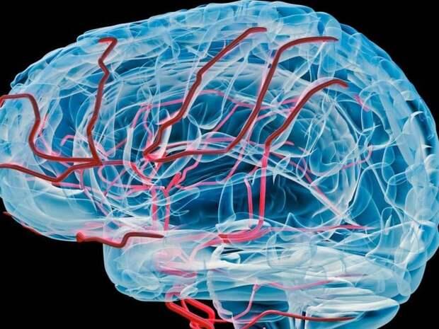 Признаки нарушения мозгового кровообращения