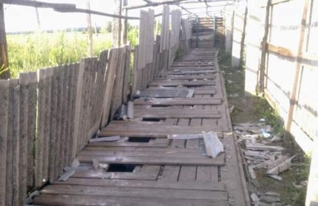 Тысячелетия идут, а технология не меняется! /Фото: livejournal.com.