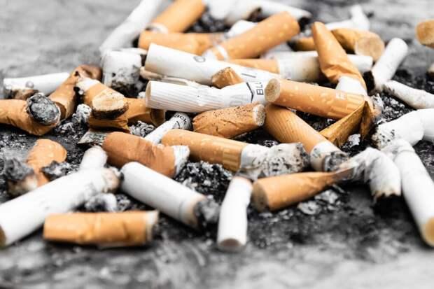В России отпуск для некурящих может стать на 10 дней дольше
