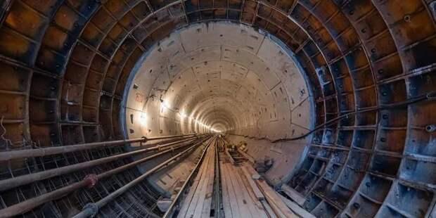 Станции «Карамышевская» и «Мневники» в составе БКЛ заработают до конца марта