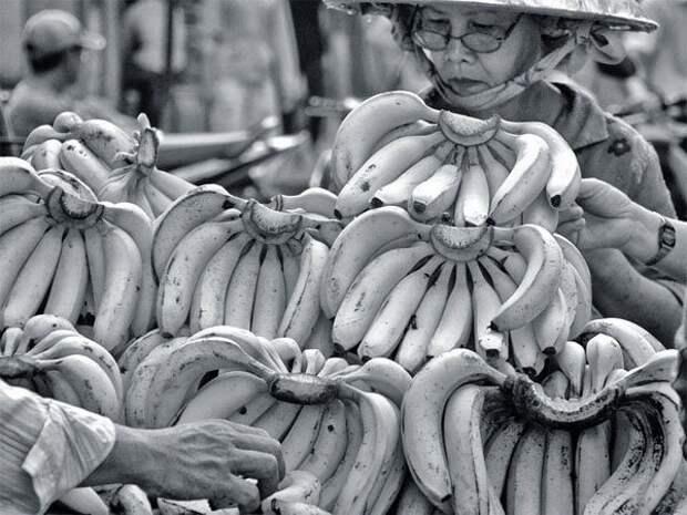 Как в СССР появились бананы