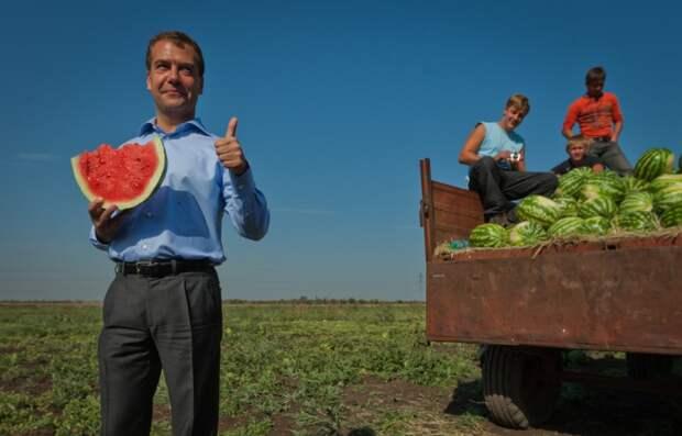 Пока в стране нечего жрать Путин загоняет людей на картошку!