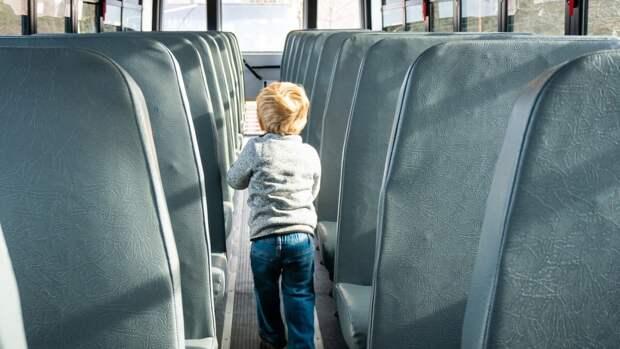 Автобусы Lux Express снова начнут курсировать между Петербургом и Таллином