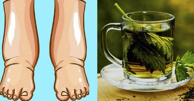 Чай с петрушкой поможет снизить вес и вывести лишнюю жидкость