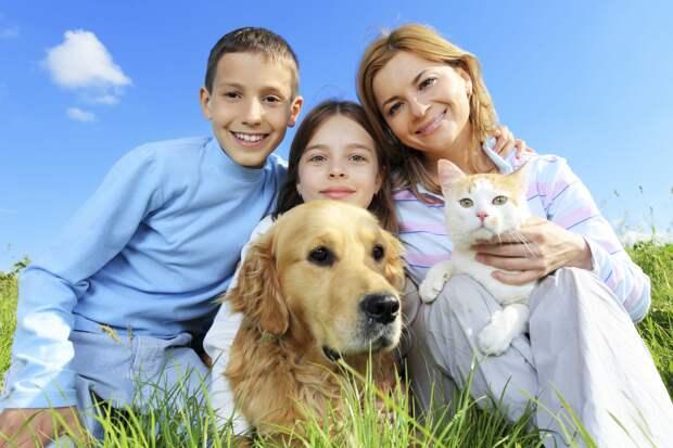 Как долго живут домашние животные разных видов и пород?
