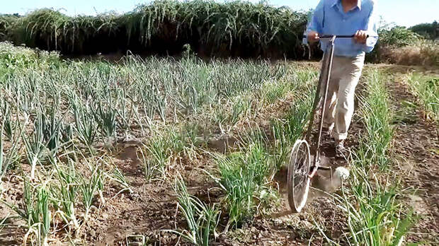 Приспособление быстрой для прополки огорода