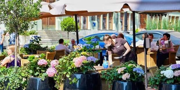Летние кафе и веранды в Москве не будут требовать QR-коды до 12 июля