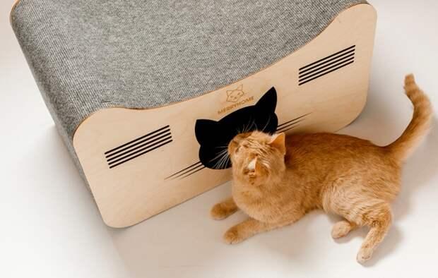 Лежанки и кошачье жилье премиум-класса