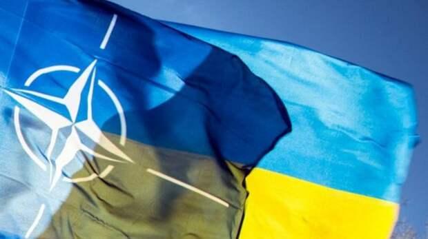 Виновата российская электроэнергия: На Украине объяснили, что мешает стране вступить в НАТО