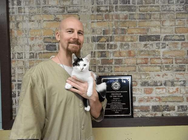 В этой тюрьме заключённым разрешают ухаживать за котами из приюта