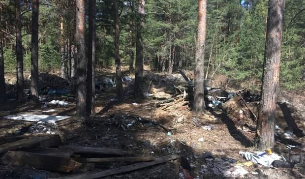 Из-за костра рыбаков загорелся лес в поселке Горноуральского городского округа