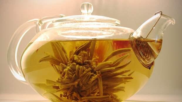 Зеленый чай и кофе назвали напитками для долголетия
