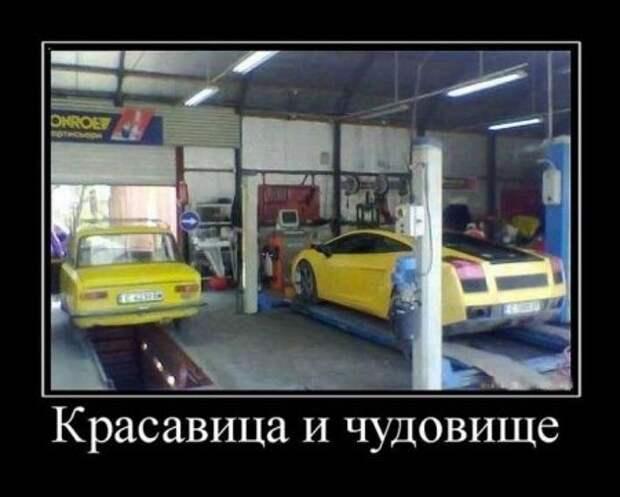 1454520932_1454517936_demotivatory_04