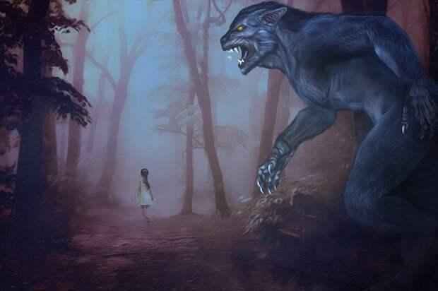 Диковинные встречи с лесными демонами