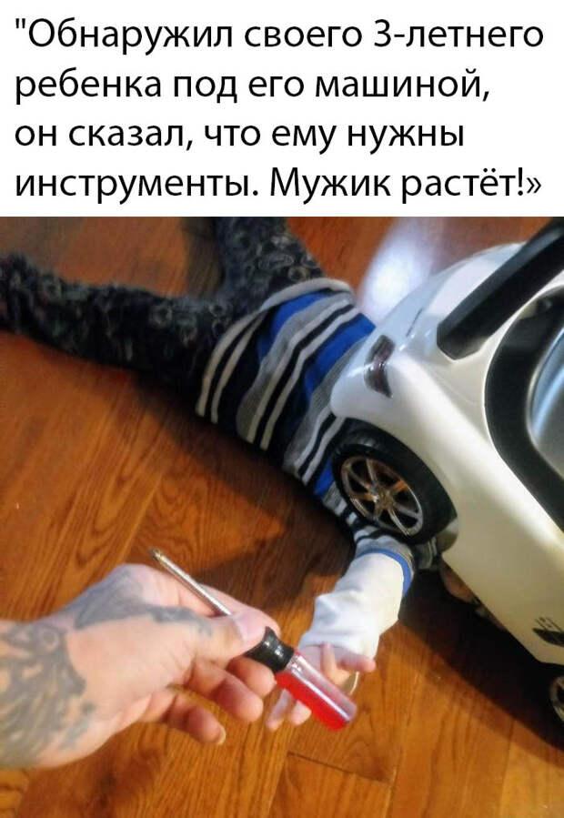 Подборка картинок. Вечерний выпуск (30 фото) - 26.02.2020
