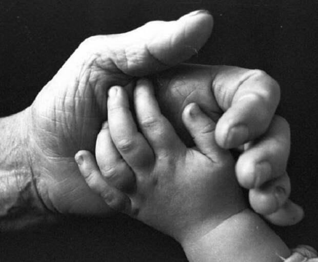 Фото руки и маленькой ручки ребенка, как символ продолжения жизни на Земле.