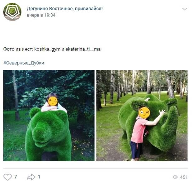 Фото дня: зеленые скульптуры в «Северных Дубках»