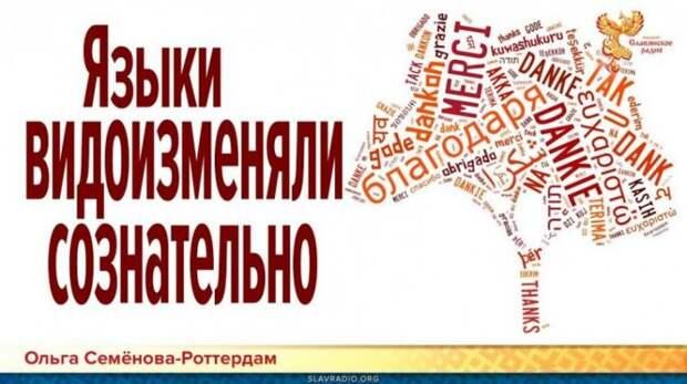 Европейские языки разделяли и видоизменяли реформами сознательно!