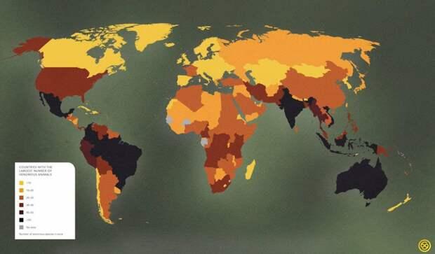 6 познавательных карт мира, в которых информации больше, чем в учебнике