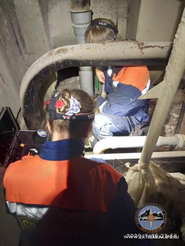 Из вентшахты на Кораблестроителей спасли кошку, просидевшую в заточении пять дней