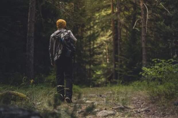 5 простых способов, позволяющих очистить голову от ментальной грязи
