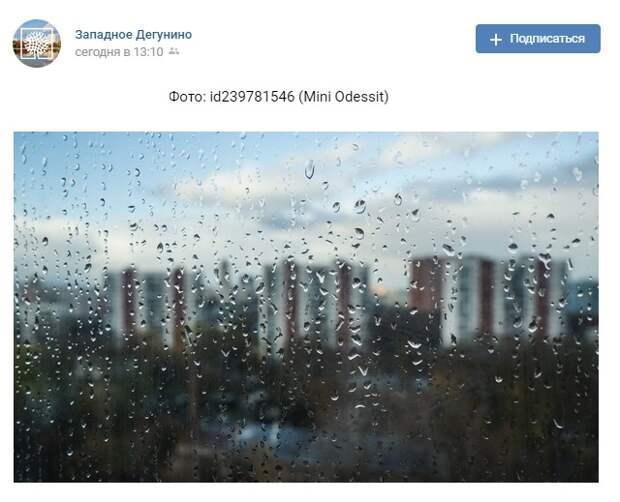 Фото дня: дегунинская осень