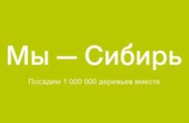 S7 Airlines завершила сбор средств на посадку миллиона деревьев в Сибири